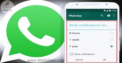 mute-notifications-whatsapp