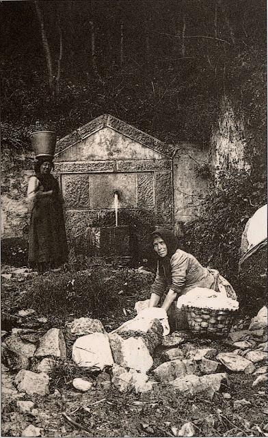 lavandera-asturiana
