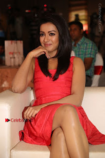 Actress Catherine Tresa Unveils Intex Air Conditioners  0146.jpg