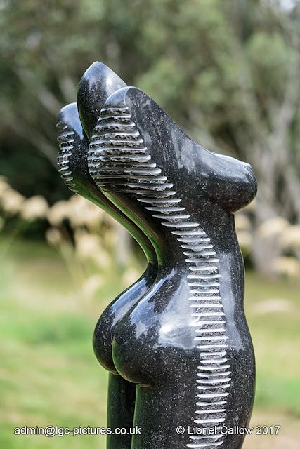 The left hand one of the thee female torso figures made from black Zimbabwean springstone