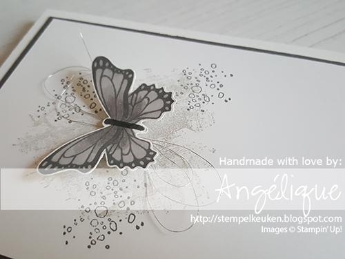 de Stempelkeuken Stampin'Up! producten koopt u bij de Stempelkeuken #stempelkeuken #stampinup #stampinupnl #stampinupnederland #stempelen #stamping #papercrafting #papercrafter #basteln #knutselen #kaartenmaken #creatiefmetpapier #creatief #echtepostiszoveelleuker #overlijden #condoleance #vlinders #vlinder #butterflies #workshop #denhaag #westland #rijswijk #delft #cardmaking #cardmakersofinstagram #kleurenvoorvolwassenen