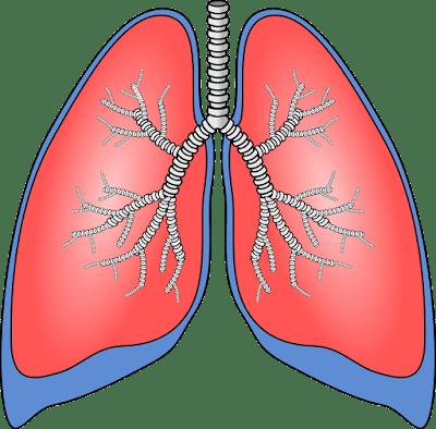 Akciğer Tansiyonu Tedavisi