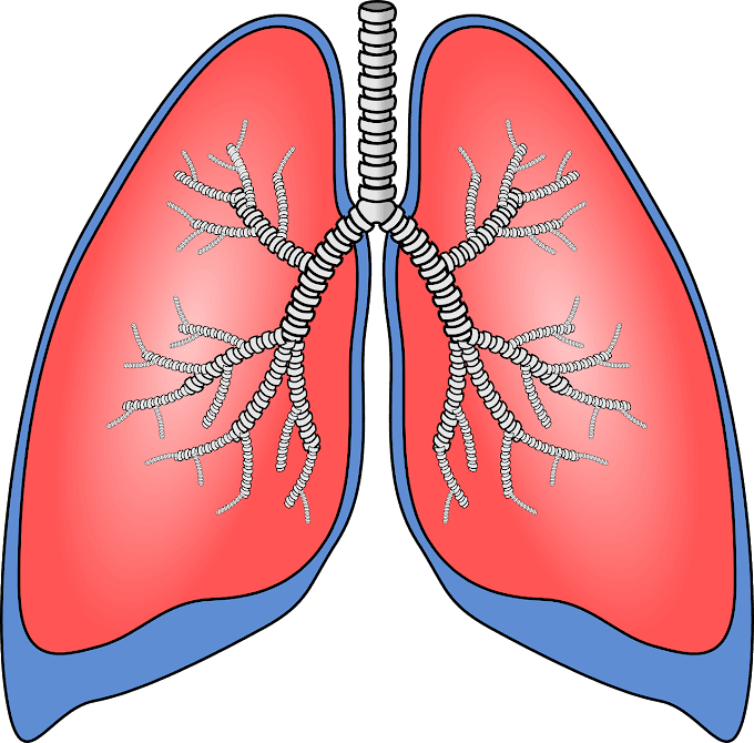 Akciğer Tansiyonu Nedir?
