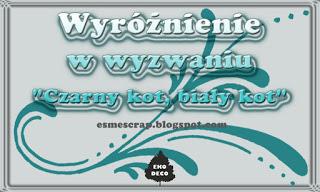 http://esmescrap.blogspot.com/2015/07/wyniki-wyzwania-1-czarny-kot-biay-kot.html