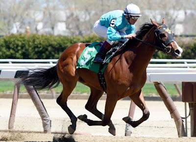 2yo racing blog, horse racing blog, horse betting blog,