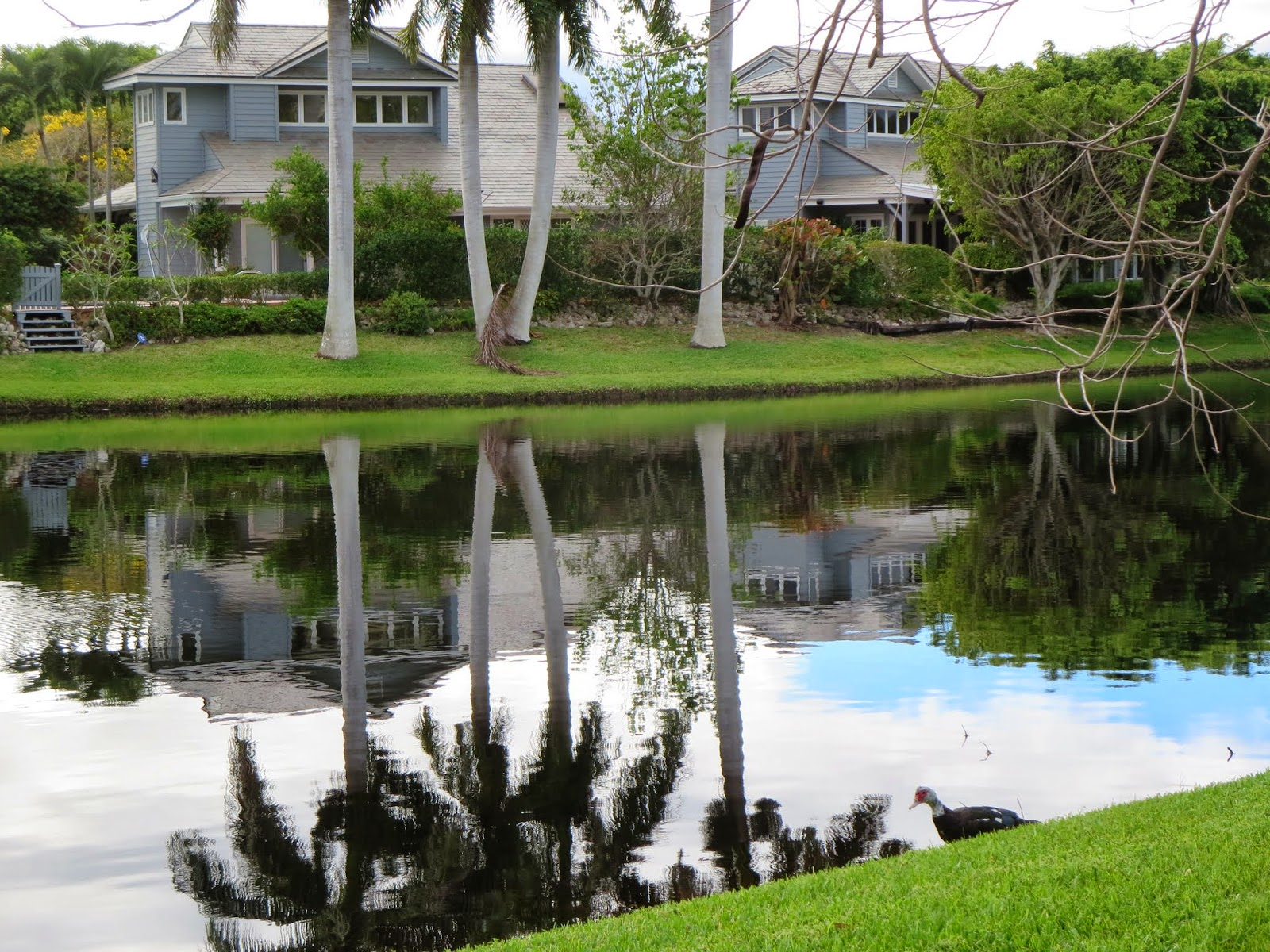 Naples, Florida - Clam Pass Boardwalk and Beach | Sidewalk Safari