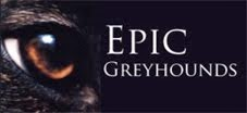 Epic Greyhounds