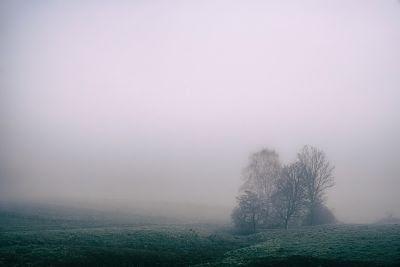 Series, distopía, ella - niebla