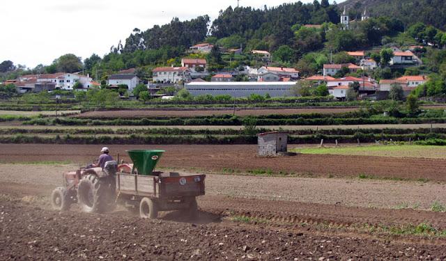 trabalhador rural num trator
