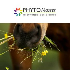 Gamme Phyto Master