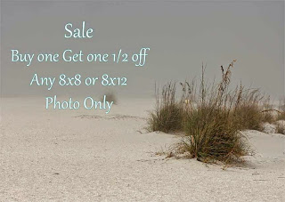 https://www.etsy.com/listing/128025009/bogo-half-off-8x8-or-8x12-photograph-buy?ref=shop_home_active_4