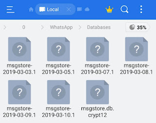 WhatsApp Databases folder