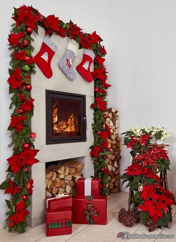 Пуансеттия в новогоднем и рождественском интерьере (2)
