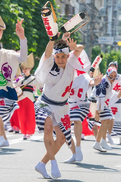 江戸っ子連、マロニエ祭りの福井町通りで男踊りの踊り手の一人を撮影した写真 その1
