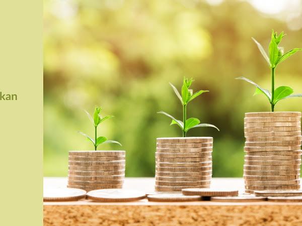 Venture Capital Tidak Hanya Memberikan Modal Finansial