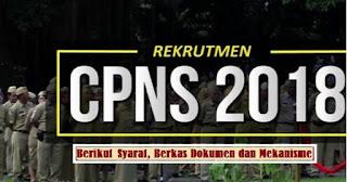 Informasi Lengkap Rekrutmen CPNS 2018; Formasi, Jadwal, Syarat & Berkas