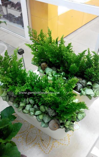 santino latina selfwatering plant pot