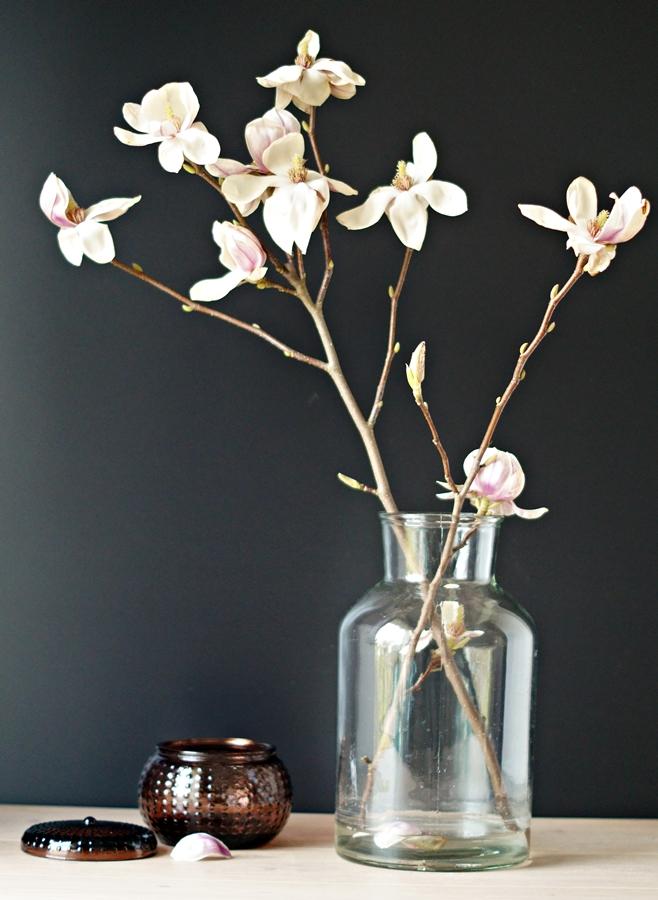 aufgeblühter Magnolienzweig in einer Vase, mit Deko