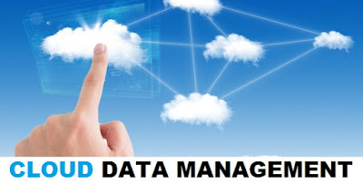 Data Management on the Cloud For Small Businesses