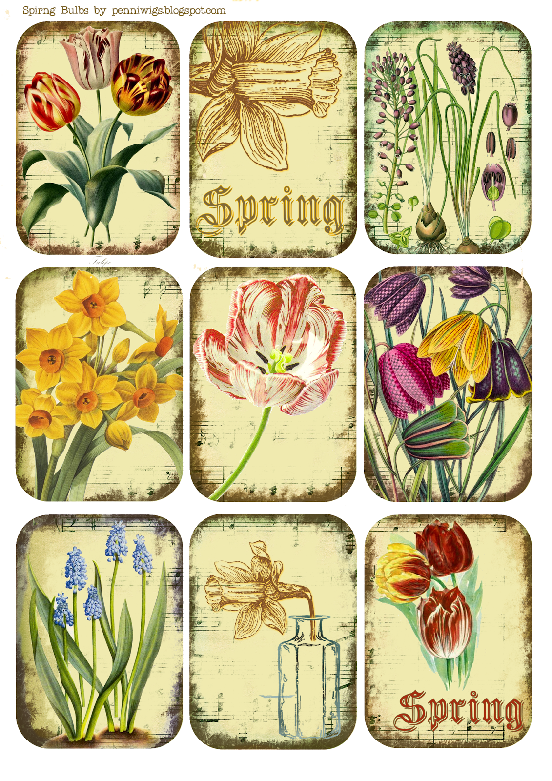 Penniwigs Free Graphics Printables Paper Fun Lore And More Shabby Spring Bulbs Tags Mini