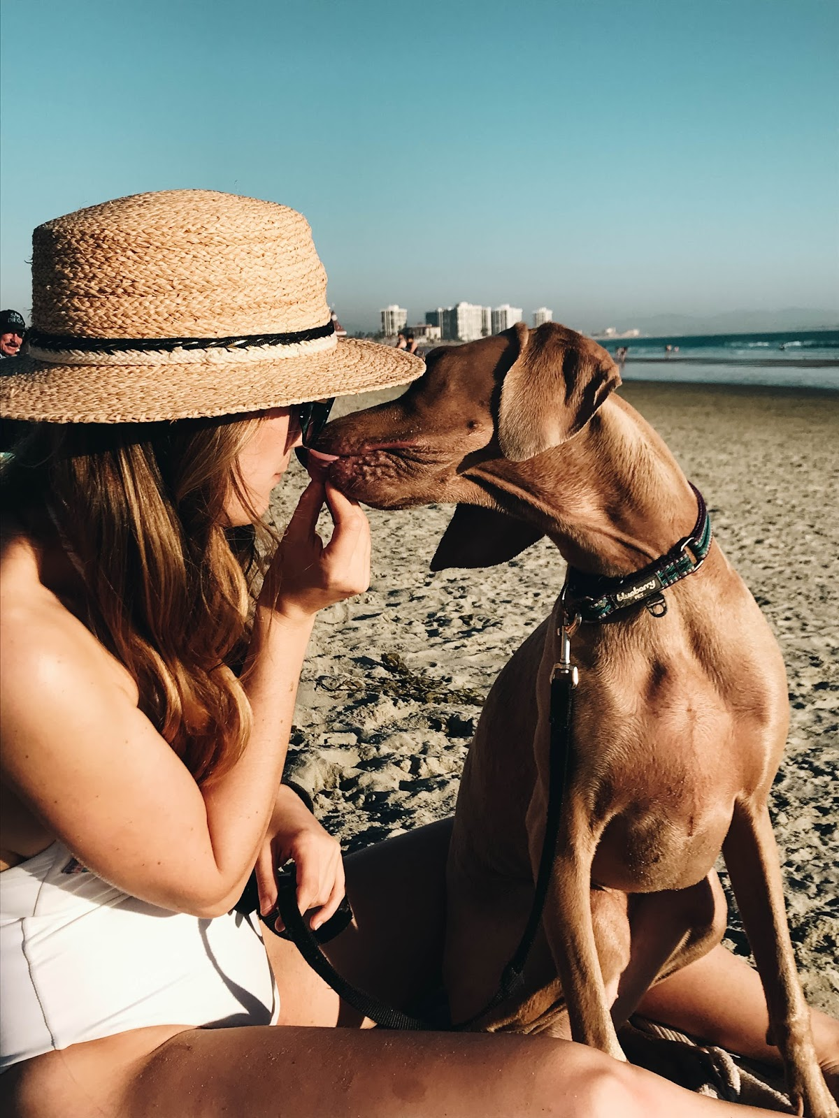Coronado Dog Beach, San Diego