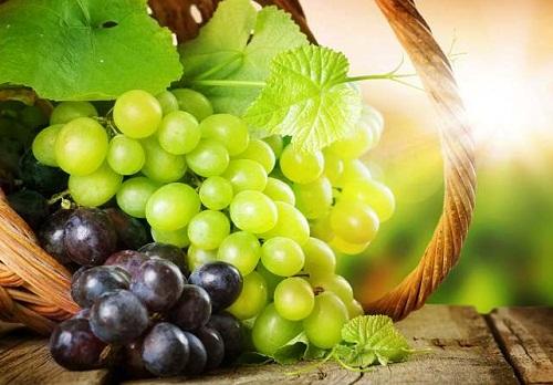 Inilah Manfaat Buah Anggur Untuk Kesehatan Yang Mungkin Belum Banyak Orang Yang Tau
