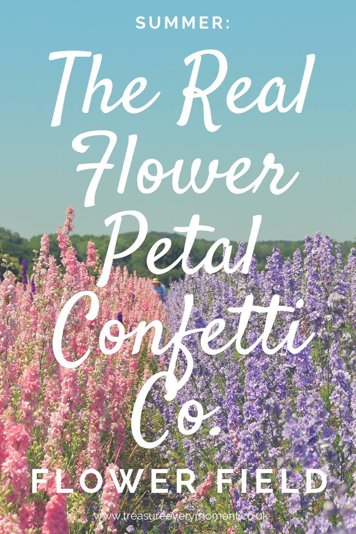 SUMMER: The Real Flower Petal Confetti Co. Flower Field