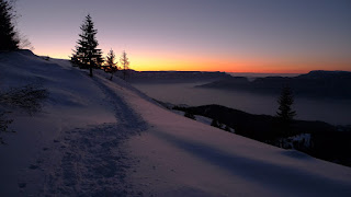 A snowy winter landscape with the sun barely below the hills in the distance, creating a gradient colour effect in the sky. There is a trail of prints through the snow, and scattered conifers.