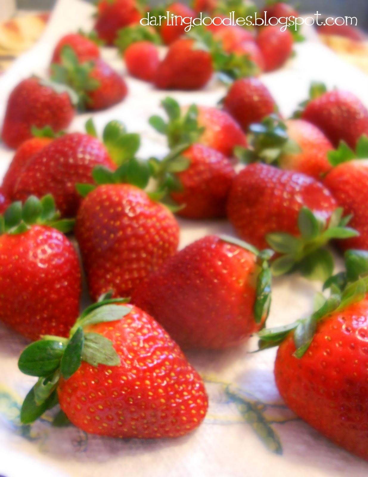 Chocolate Dipped Strawberries - Darling Doodles