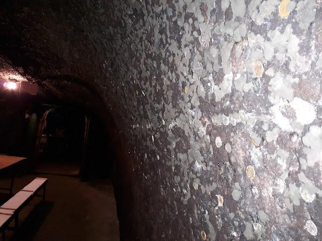 Winnica w Eger na Węgrzech porośnięta Szlachetną Pleśnią Przeczytaj Koniecznie