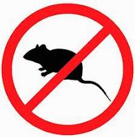 """""""racun tikus"""""""