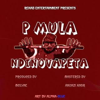 [feature]P Mula - Ndinovapeta