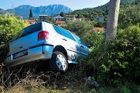 Garanzie accessorie assicurazioni Genialloyd per collisione con animali e veicoli non identificati