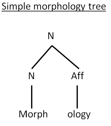 Teaching and Learning of Morphology