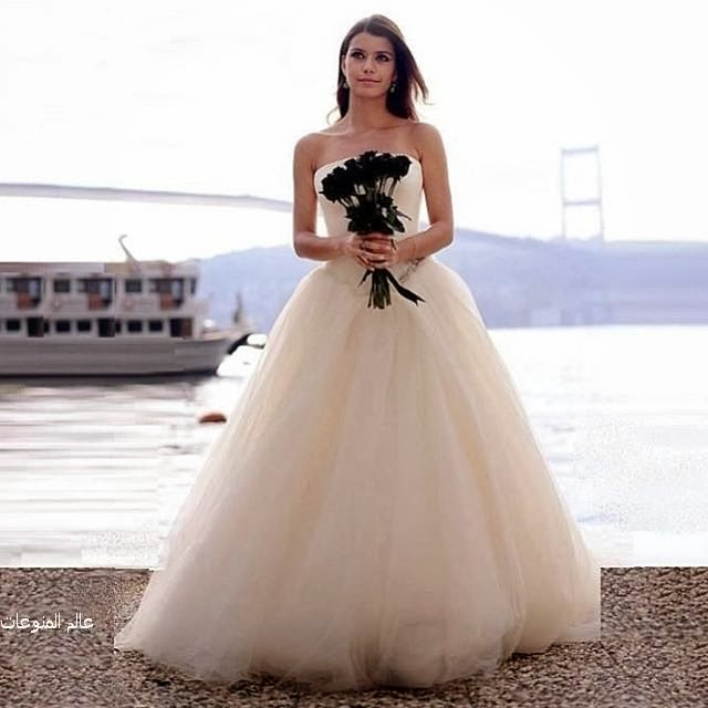 82fee77c72448 اروع صور فساتين زفاف 2014 - عالم المنوعات