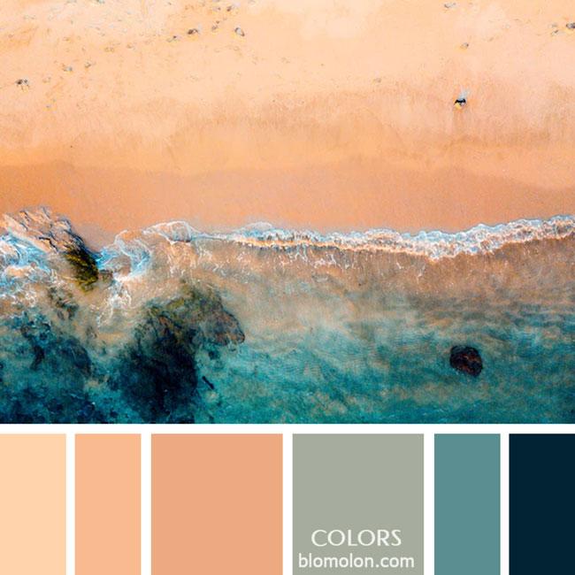 variedad_en_color_paletas_de_colores_17