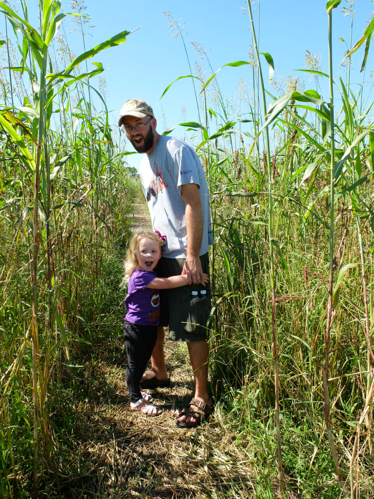 Partin Ranch Corn Maze, Things to do in Brevard