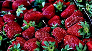 strawberries for cancer medicines