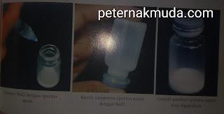 proses pengenceran sperma ayam
