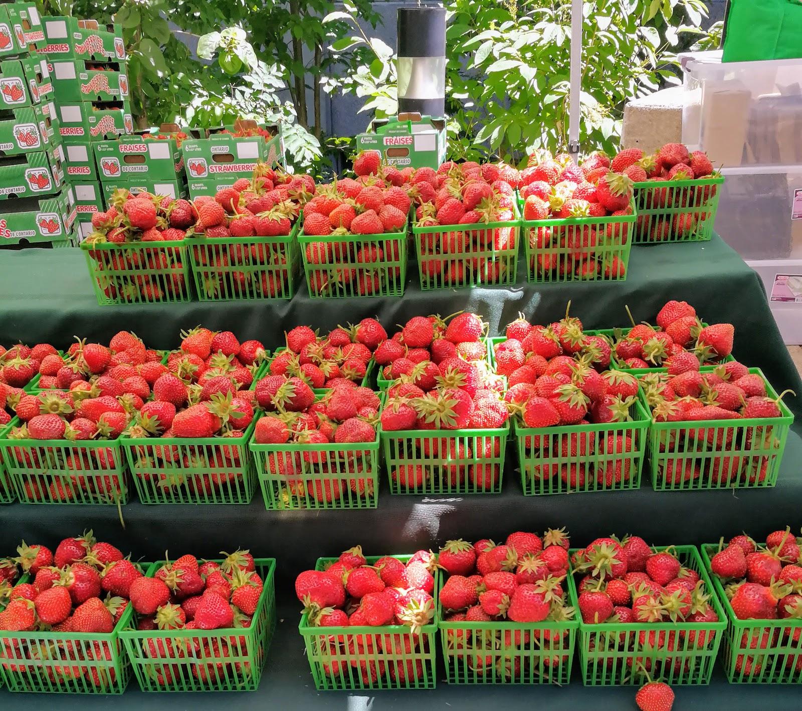 Toronto Farmers Market, fresh strawberries