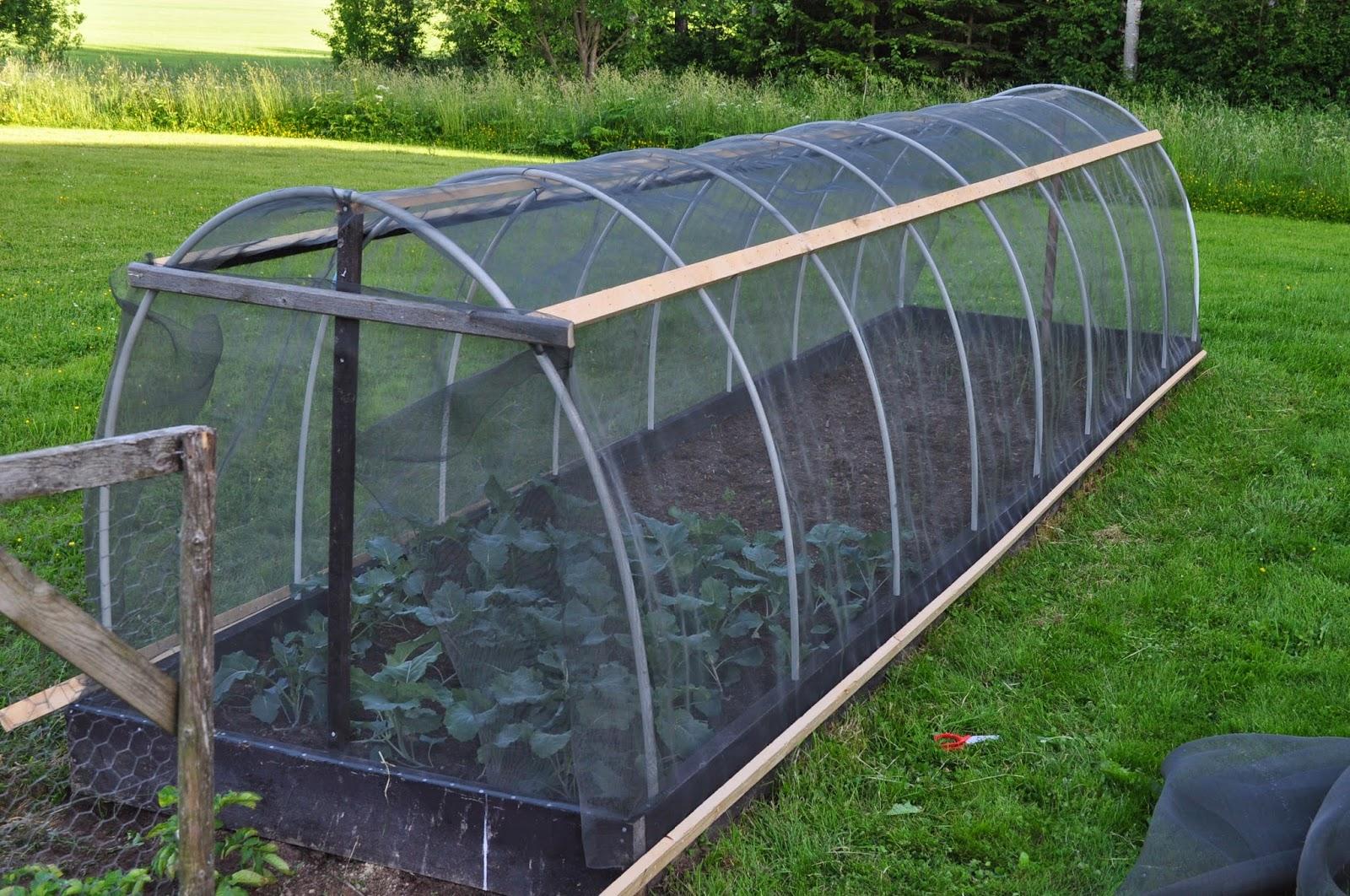 bygga växthus pallkrage