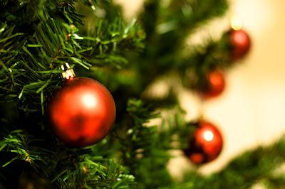 6 coisas que a sua árvore de natal esconde de você