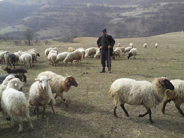 """400 soldados azeríes y civiles acusados de """"conspirar con armenios"""""""