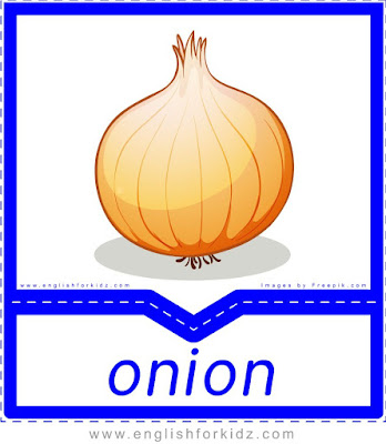 Onion - English flashcards for the fruits, vegetables and berries topic