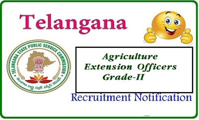 TSPSC Telangana Public Service Commission-TSPSC  Notification No 19/2015 Dt 30/12/2015 Agriculture Extension Officers Grade-II Department of Agricultural Subordinate Service | Recruitment Notification for Agriculture Extension Officers in Agriculture Department of Telangana State by Telangana Public Service Commission tspsc-agriculture-extension-officers-recruitment-notification-in-telangana