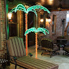 Interesting Concept For Palm Tree Decor, Tropical Bedroom Decorating ideas photos