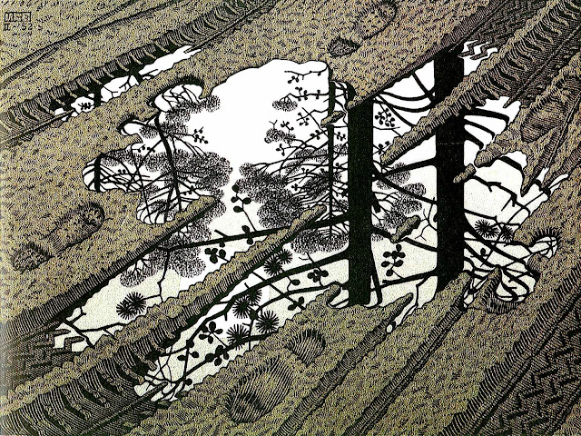 Maurits Cornelis Escher, mudpuddle reflection