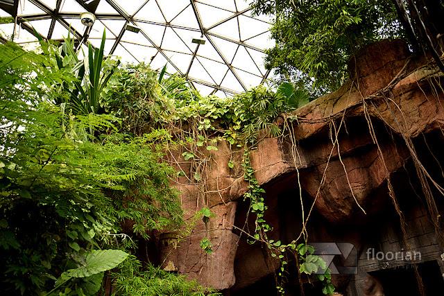 Dania - Randers Regnskov Tropical Zoo z dzieckiem