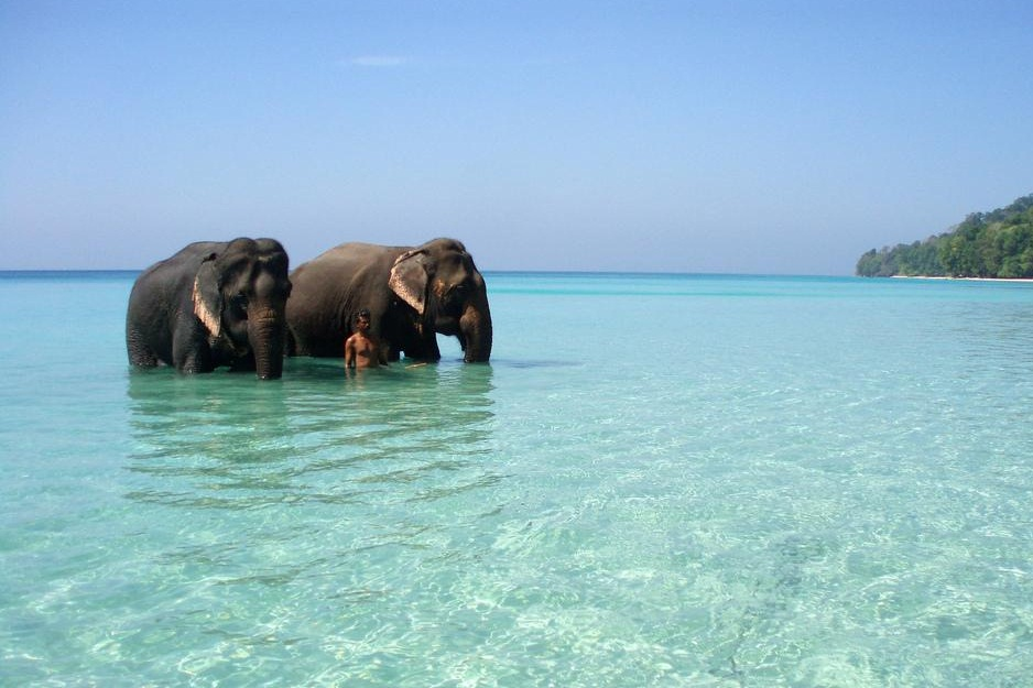 Havelock Island: Dreams Destinations