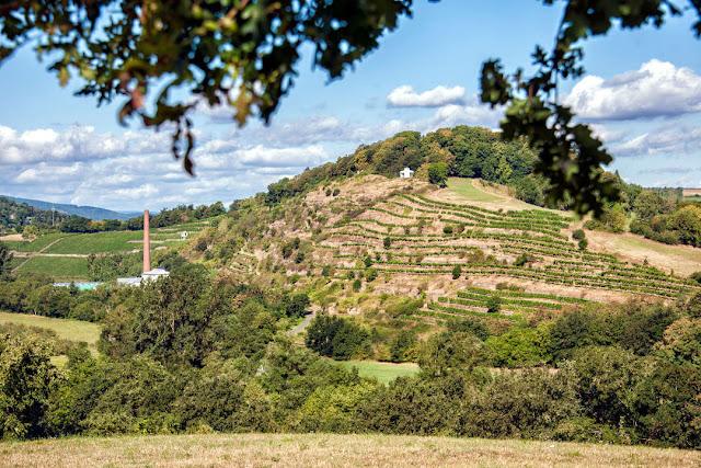 Die Spitzenlage Disibodenberg ist jetzt fast vollständig in Besitz des Weingutes Klostermühle Odernheim